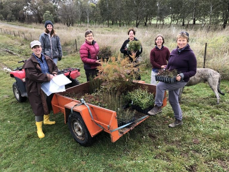 Beechworth Honey Bee Arboretum with volunteers