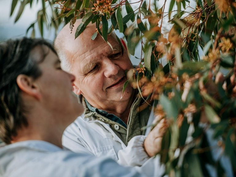 Learn-About-Us-Inspecting-Trees