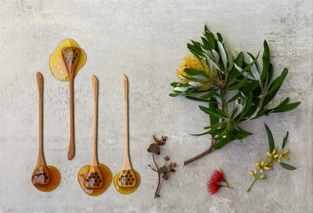 Single-Varietal-Honey-Gateway